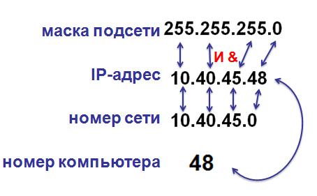 объяснение 12 задания ЕГЭ по информатике маска адрес сети