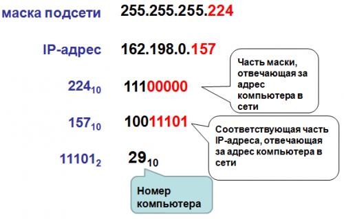 Порядковый номер компьютера в сети